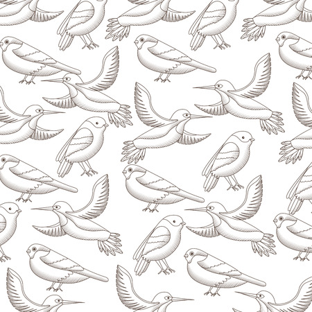 Cute birds flying with beautiful plumage pattern vector illustration design