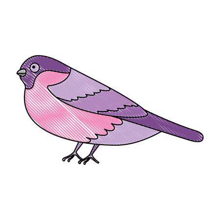 Cute bird with beautiful plumage vector illustration design Ilustração