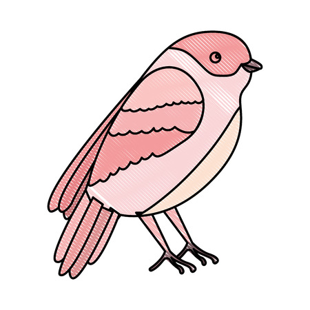 cute bird with beautiful plumage vector illustration design