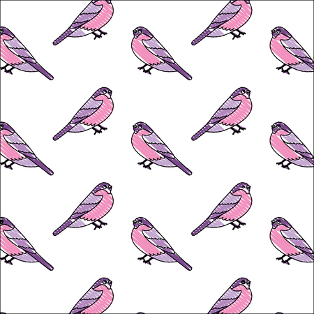 cute birds with beautiful plumage pattern vector illustration design