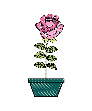 flower rose in a pot decorative vector illustration design