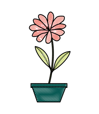 flower daisy in a pot decorative vector illustration design Illusztráció