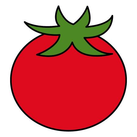 tomato vegetable healthy food vector illustration design Stock Vector - 98595903