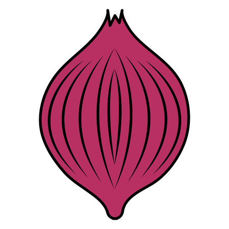 onion vegetable healthy food vector illustration design