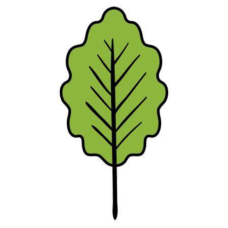 leaf plant healthy food vector illustration design Stock Vector - 98595924