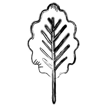 leaf plant healthy food vector illustration design Stock Vector - 98595956