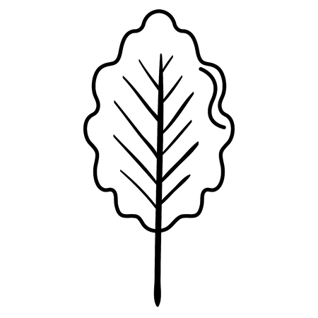 leaf plant healthy food vector illustration design Stock Vector - 98595972