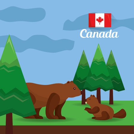 Canada bear and beaver in the forest vector illustration Illustration