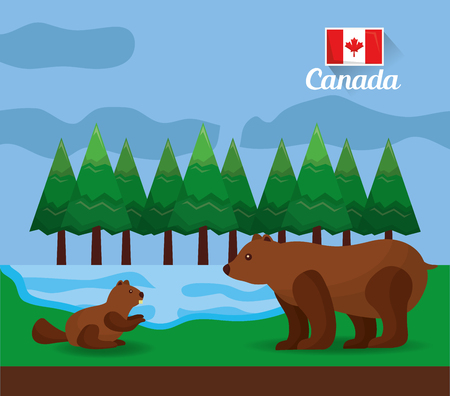 canadian bear and beaver in the forest lake vector illustration Illustration