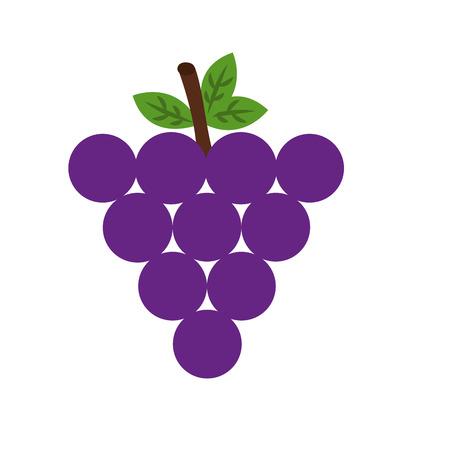 Fresh grapes fruit healthy food vector illustration design. Illustration