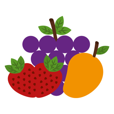 Fruits group healthy food vector illustration design.