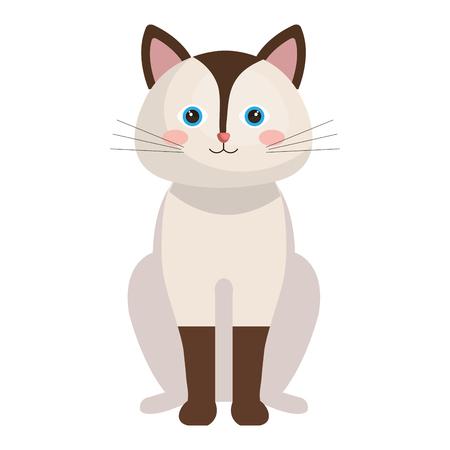 cute cat pet friendly vector illustration design