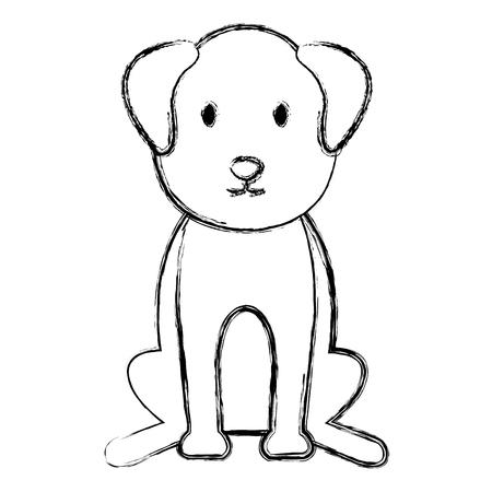 dog bred pet friendly vector illustration design