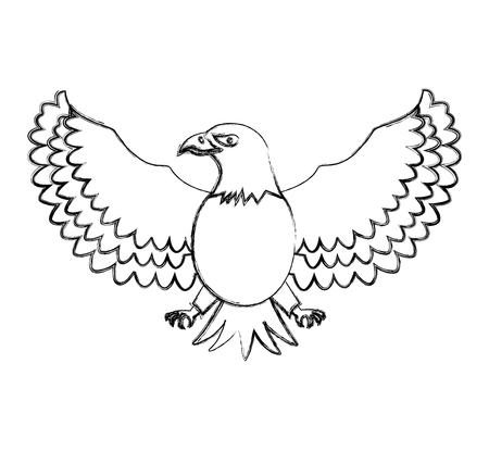 american eagle bird freedom national symbol vector illustration sketch