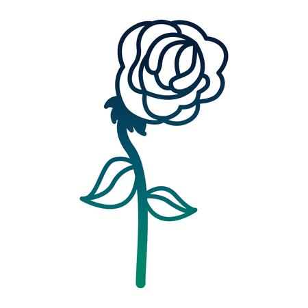 Blume in Form von Rose Vektor-Illustration Design Standard-Bild - 98879613