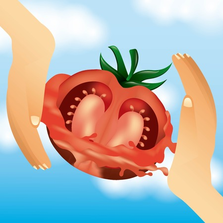 la tomatina hands catch tomatoes splash celebration vector illustration Illustration