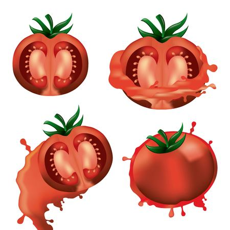 collection half tomatoes vegetables harvest raw vector illustration