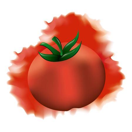 tomato ripe fresh vegetable splash watercolor vector illustration