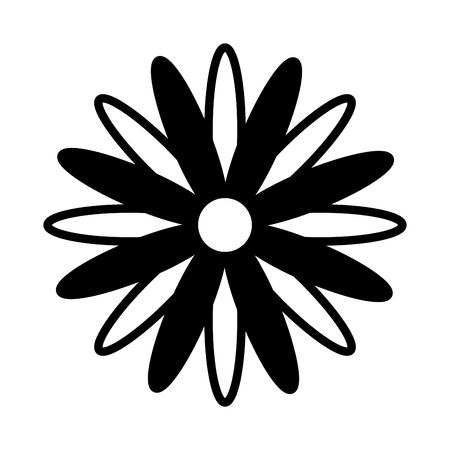 black and white flower daisy decoration vector illustration