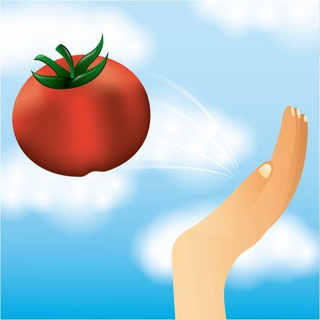 la tomatina hand take tomato blue sky vector illustration