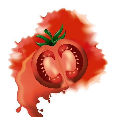 la tomatina smash tomato war festival vector illustration Stock Illustratie