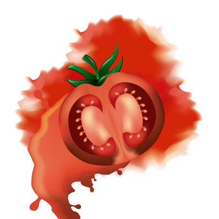 la tomatina smash tomato war festival vector illustration  イラスト・ベクター素材