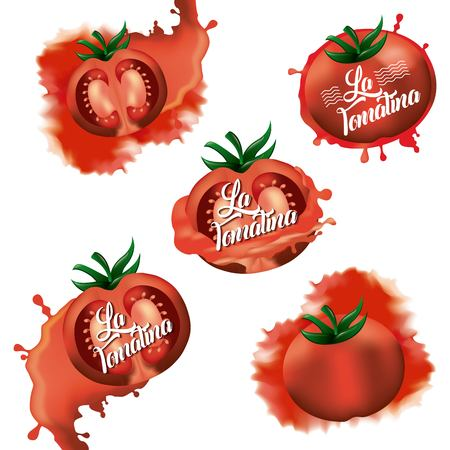 la tomatina tomatoes splash red fest vector illustration