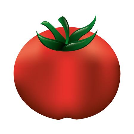tomato fresh healthy food vector illustration design Illustration