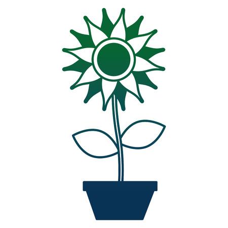 cute sunflower in pot decorative icon vector illustration design