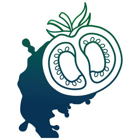 tomato crashed isolated icon vector illustration design