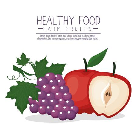 Delicious fruits healthy food vector illustration design 일러스트