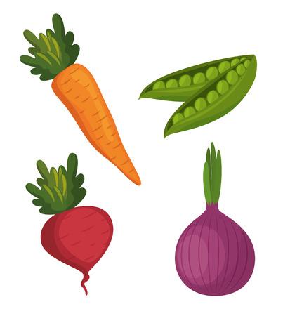 fresh vegetables organic and healthy food vector illustration design Ilustração