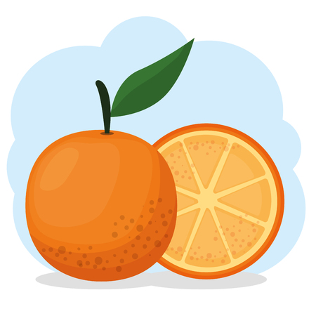 fresh citrus orange healthy food vector illustration design