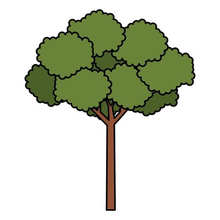 tree plant natural icon vector illustration design 일러스트