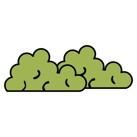 Garden bush isolated icon vector illustration design.
