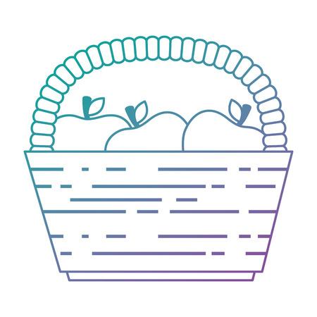 basket with fresh apples vector illustration design Illustration