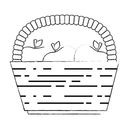 basket with fresh apples vector illustration design 일러스트