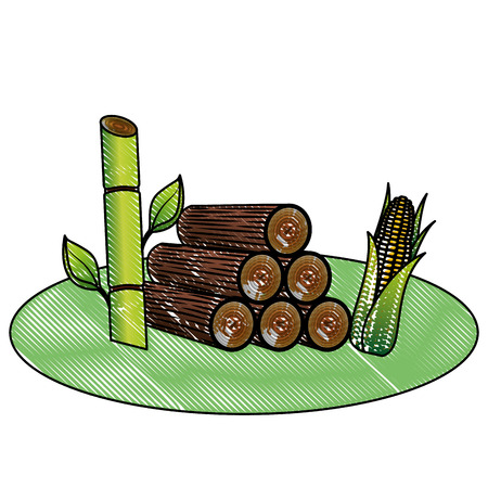 An ecology energy alternative corn and plant sugar cane vector illustration drawing