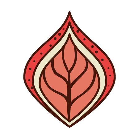 Feuille ethnique icône de la décoration illustration vectorielle conception Banque d'images - 99440681