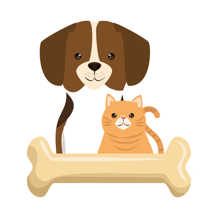 cute dog and cat with bone characters vector illustration design