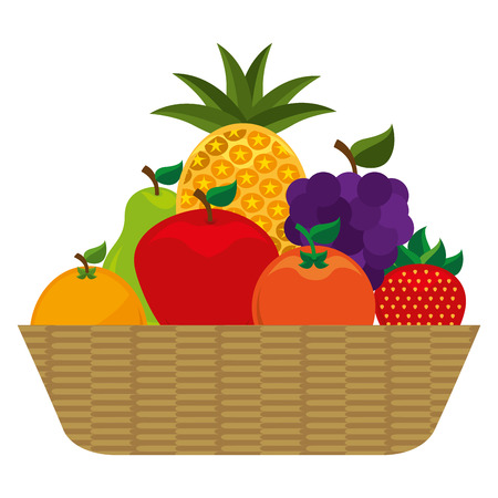 basket with fruits icon vector illustration design 向量圖像