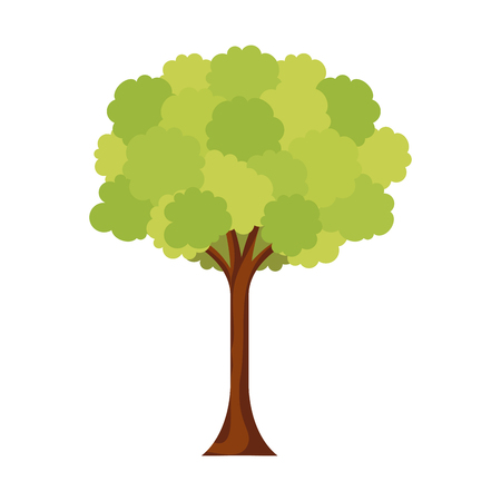 leafy tree foliage branch trunk image vector illustration