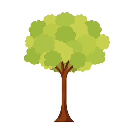 leafy tree foliage branch trunk image vector illustration