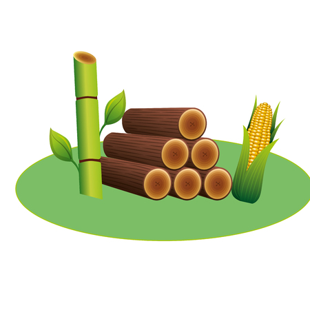 Wooden trunks with sugar cane and corn  illustration design