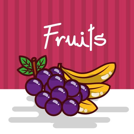 Fresh fruits vector illustration Stock Illustratie