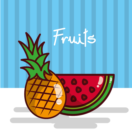 Pineapple and watermelon fruits vector illustration