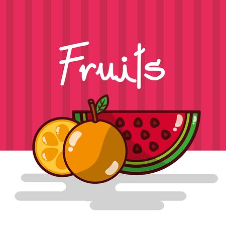 Watermelon and orange fruits vector illustration