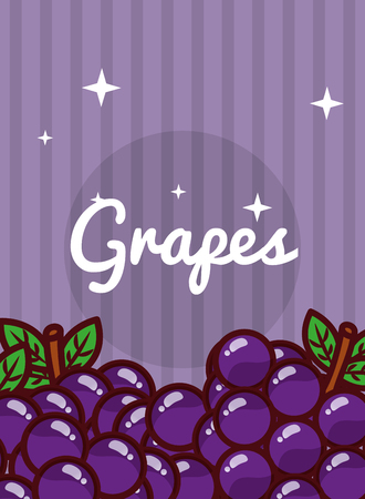 striped bright background fresh natural fruits grapes vector illustration