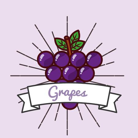 grapes fruit organic vitamins emblem vector illustration