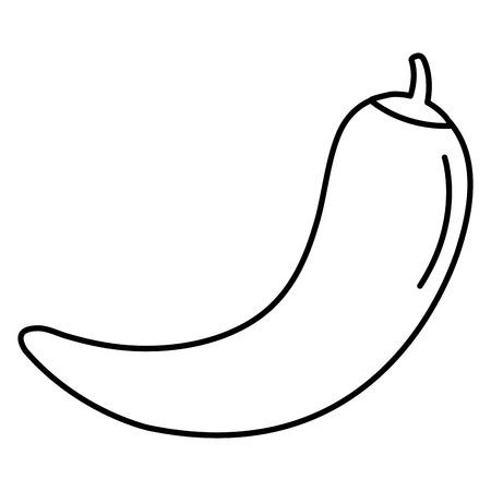 고추 고추 뜨거운 야채 벡터 일러스트 레이 션 디자인